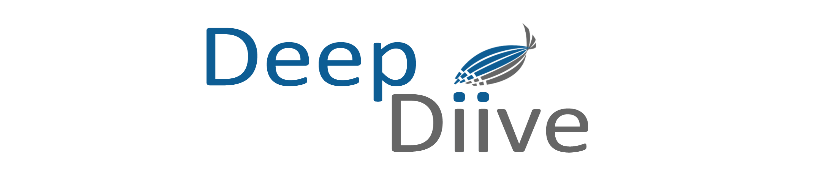 Deep Diive Solutions, llc